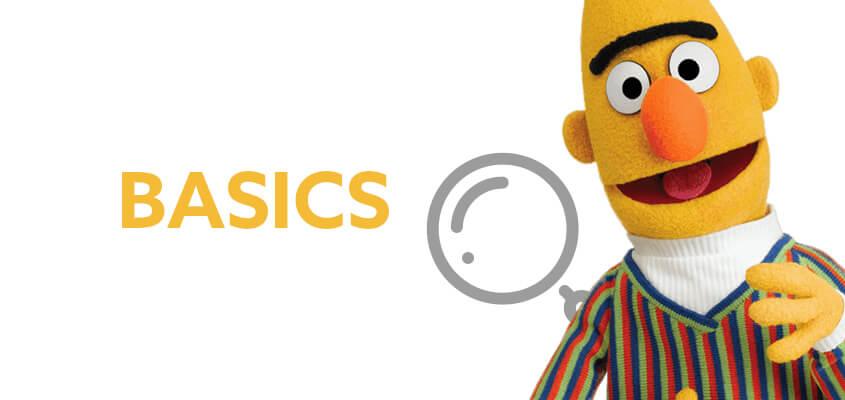 Bert-Basics